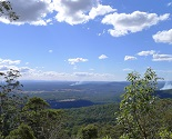 Tamborine Mountain National Park - Gold Coast Hinterland