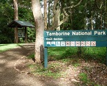Tamborine Mountain National Park - Gold Coast places to visit