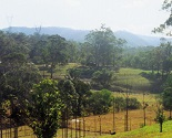 Mount Nathan Winery Gold Coast Hinterland