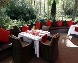 Songbirds Rainforest Retreat Multi Award Winning Restaurant