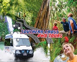 Southern Cross 4WD Tours Gold Coast Rainforest and Wildlife