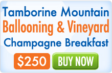 Stay at Mt Tamborine's Songbirds Rainforest Retreat and do a Hot Air Balloon ride