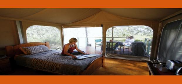 Jabiru Safari Eco Lodge Mareeba Australia