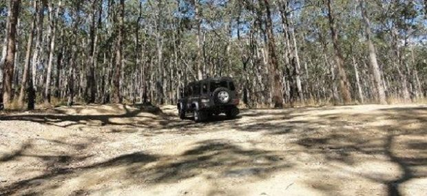 Southern Cross Gold Coast Hinterland 4WD Tour.jpg