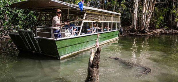 Hartleys-Crocodile-Adventures-Cairns-Day-Tour
