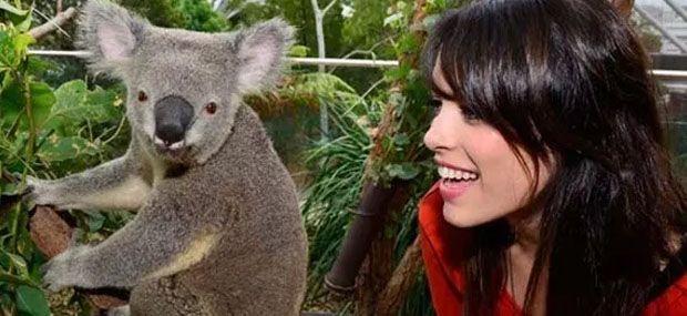 kangaroo-feeding-kuranda-koala-gardens