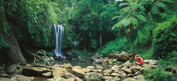 Natural-Arch-Waterfalls-Gold-Coast-Day-Tours-Gold-Coast-Attractions
