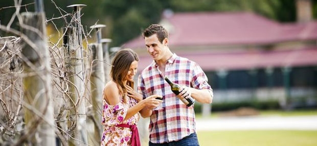 Hot-Air-Balloon-Brisbane-Wine-Tasting-Canungra-Valley-Vineyard
