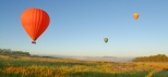 Brisbane-Gold-Coast-Balloon-OReillys-Canungra-Valley-Vineyard-with-Champagne-Breakfast
