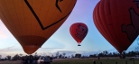 Scenic-Hot-Air-Balloon-Ride-and-Luxury-Tour-Cairns-and-Port-Douglas